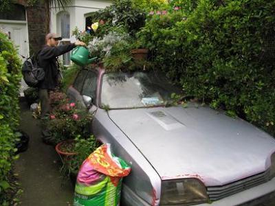 Imágenes de Irlanda: 'El jardinero talibán'