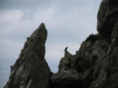 Imágenes de Irlanda: 'No mires abajo'